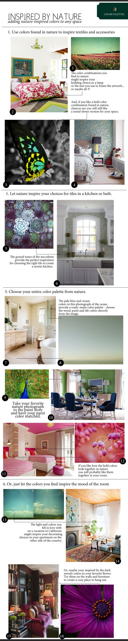 nature-inspired-color-palette copy
