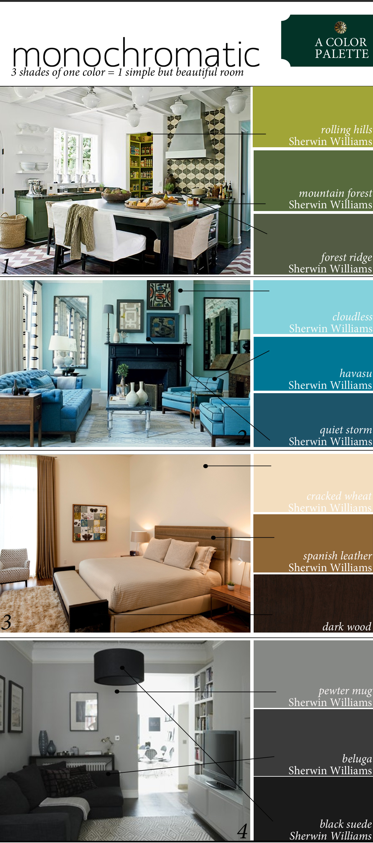 color palette using monochromatic colors the anatomy of design