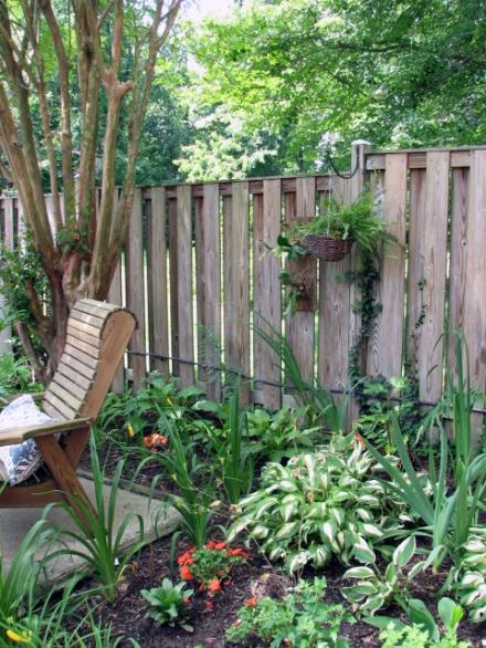 backyard8